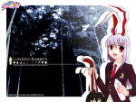 th_Reisen_Tewi0009.jpg